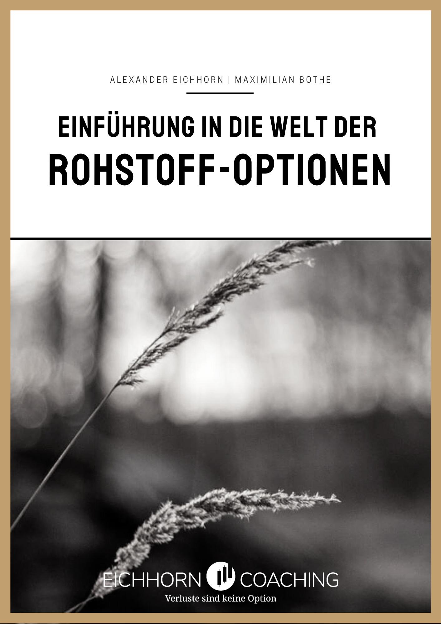 E-Book: Einführung Rohstoff Optionen